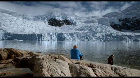 ICE AND THE SKY - Teaser