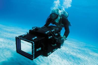 OCEANWORLD 3D - Still 3