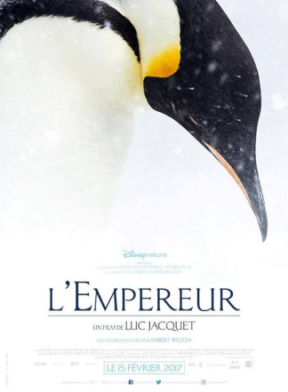 MARCH OF THE PENGUINS 2 – THE CALL